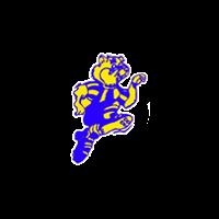 Отечественный хоккей.Первый, второй,третий и четвертый эшелоны 1965/1966--1969/1970 гг.Молодежные и юношеские первенства СССР 1955/1956--1969/1970 гг. А. Серебренников